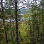 Это был настоящий ОТДЫХ турбаза Талвисъярви в Карелии отдых летом и осенью