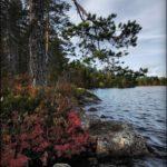 Привет всем желающимпосетить базу 171Талвисьярви187 турбаза Талвисъярви в Карелии отдых летом и осенью