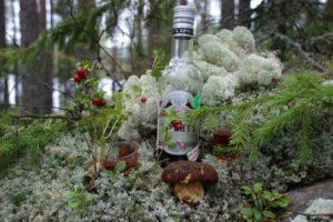 Состоялось предварительное открытие базы отдыха турбаза Талвисъярви в Карелии отдых летом и осенью