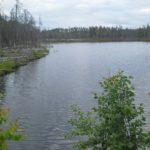 Вот и мы побывали на этой прекрасной базе 171Талвисъярви187 турбаза Талвисъярви в Карелии отдых летом и осенью