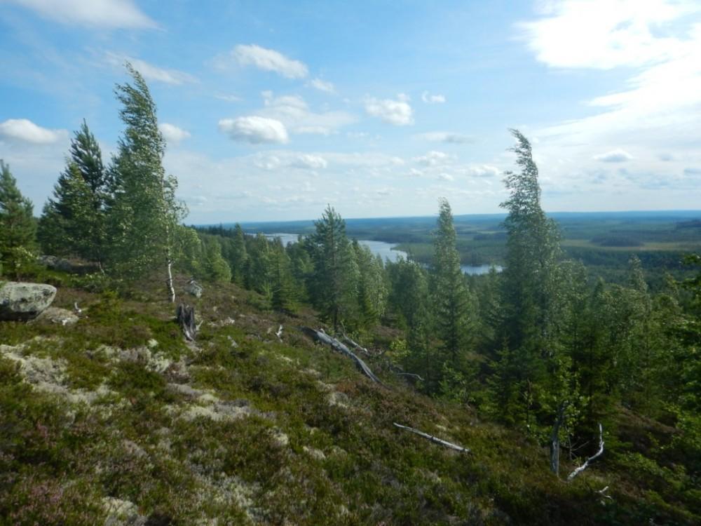Вид на базу с горы.