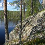 Отдых на 100 в чистой Карелии турбаза Талвисъярви в Карелии отдых летом и осенью